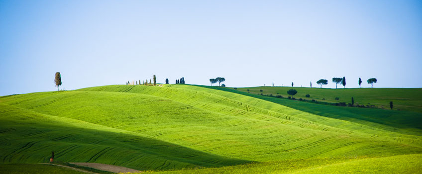 Tuscanian landscapes by Alessandro Firmalli